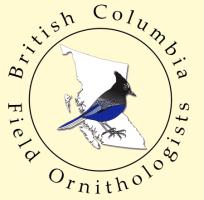 bcfo-logo