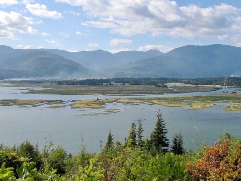 Kitimat estuary - 125